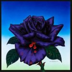 Profile picture of The Black Rose